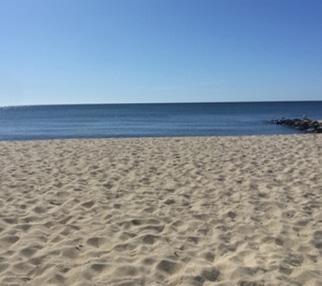 Beach-gallery-1